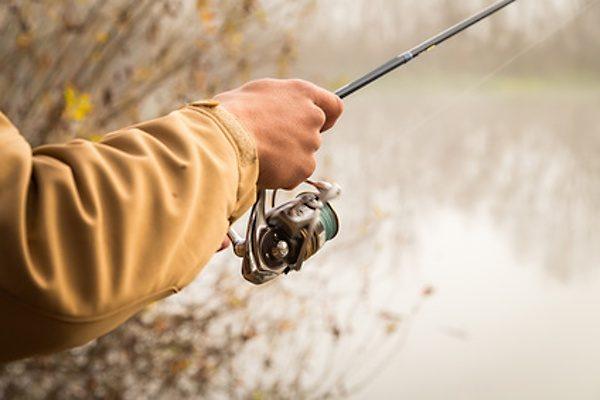 Lov kaprovitých ryb ve studené vodě