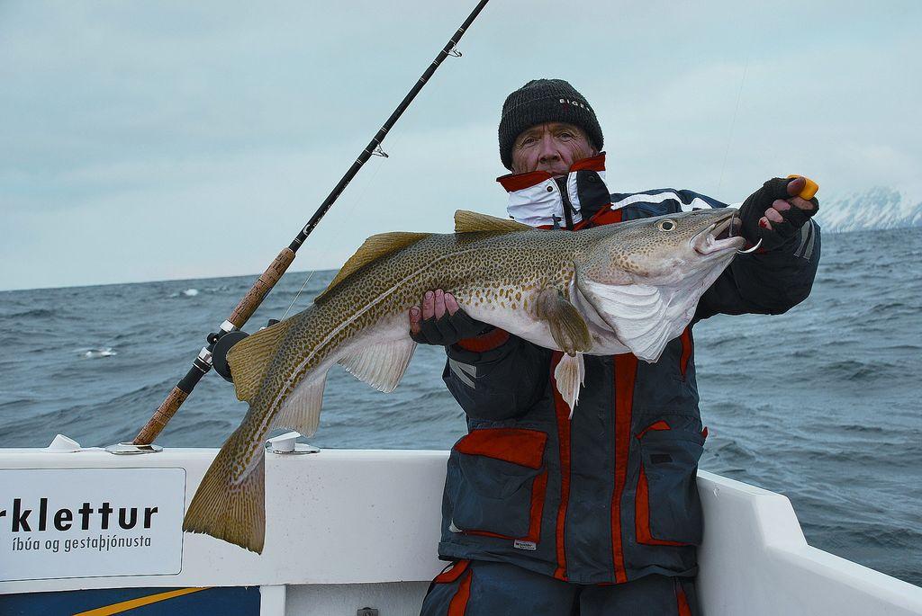 Island / nový rybářský ráj