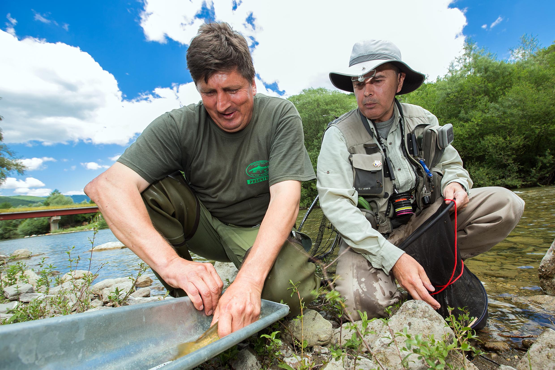 Úhyn ryb Balkáně? Přehrady zasáhnou 69 ohrožených druhů