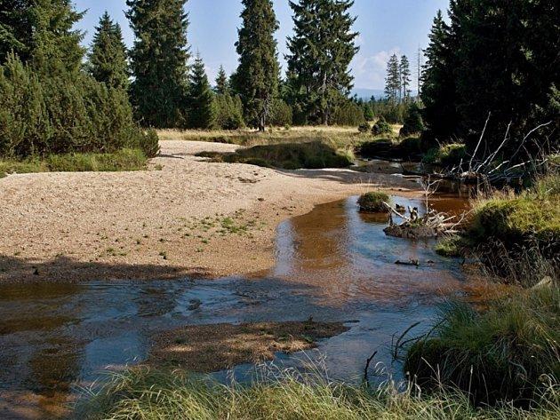 Jizerou v Turnově teče jen minimum vody