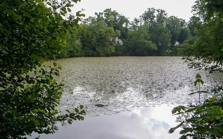 Matiční jezero zbaví bagr nánosů bahna