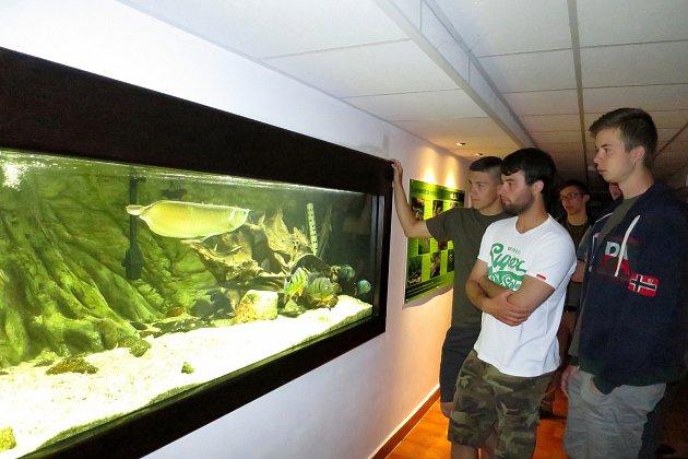 Rybářská škola ukáže akvária i muzeum