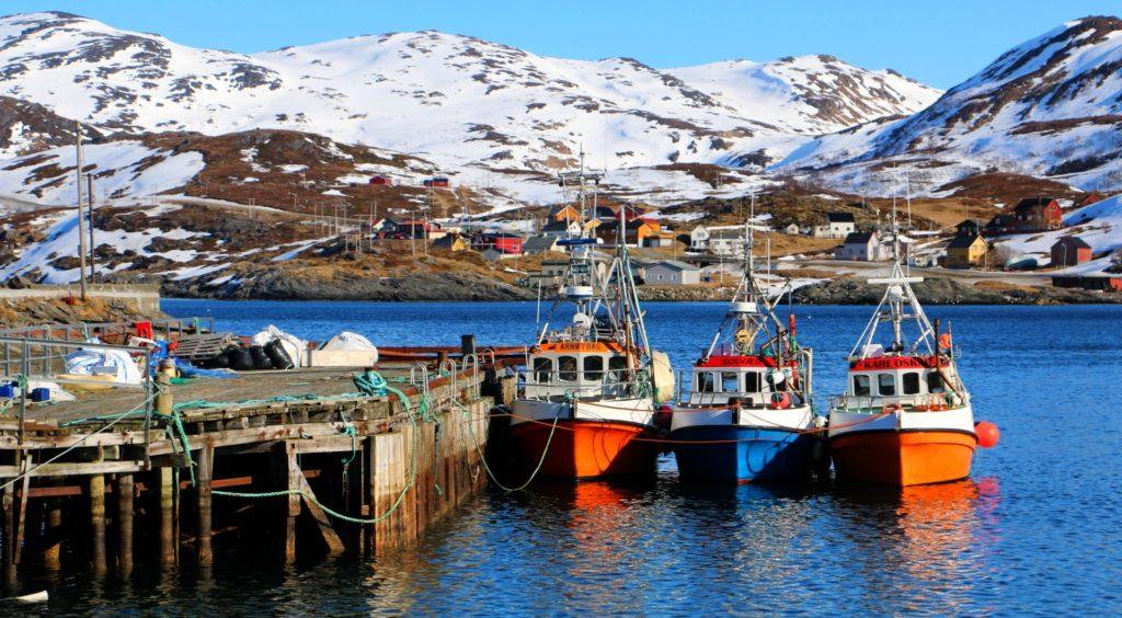 Rybí populace v Norsku