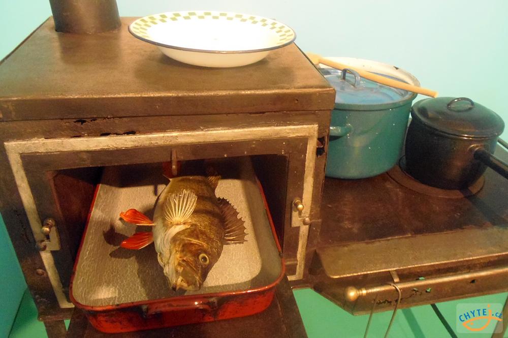 článek: Historie lovu ryb 8. – Ze staré rybářské kuchyně