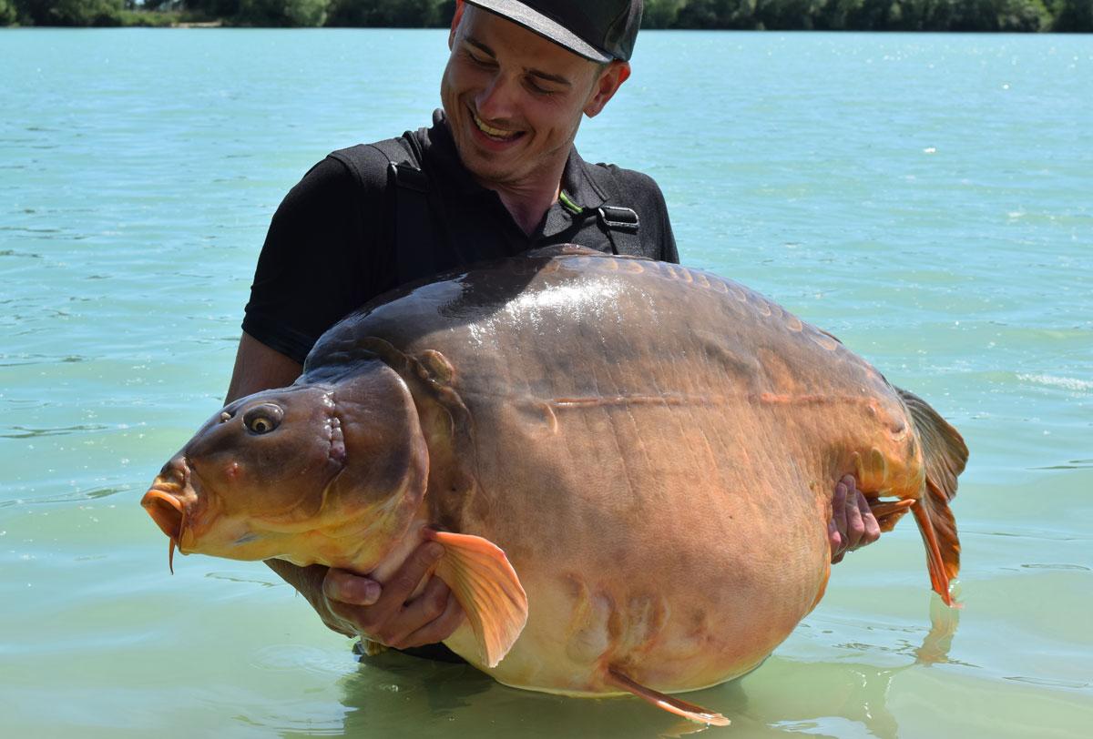 OBROVSKÝ KAPR: Rybář chytil lysce o váze 37,6 kilogramů!