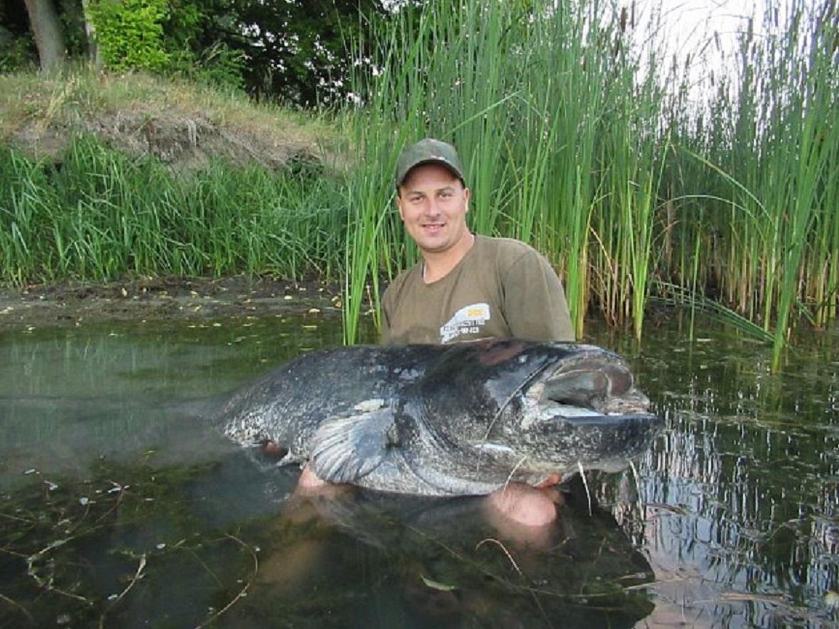 Jezero na Moravě vydalo obrovského sumce! Rybář dravce ulovil o půl jedné ráno