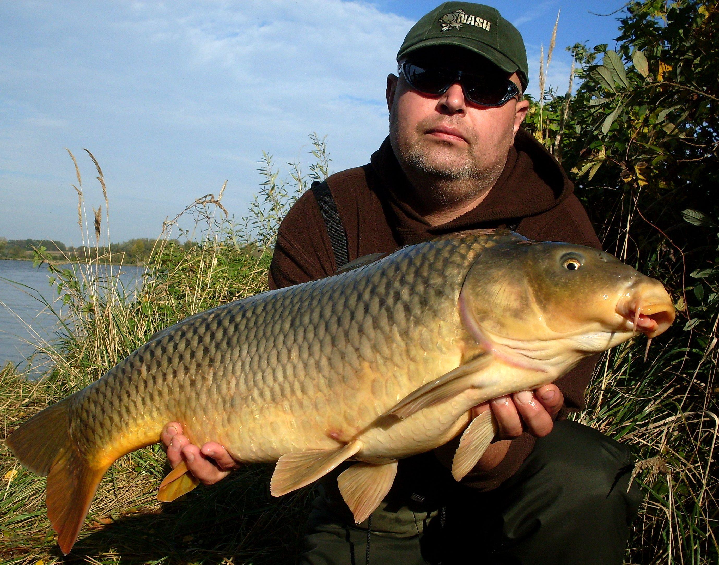 Lov kapitálních kaprů: Zaručený tip! Jak vyrobit krmení, které milují trofejní ryby?