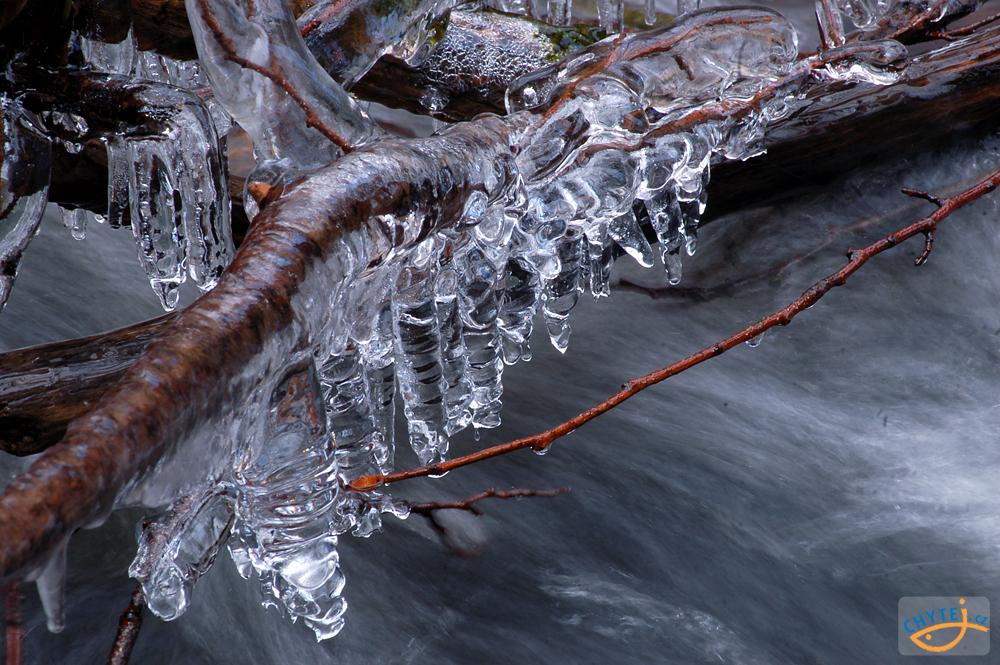 článek: Rybařina v proměnách počasí: Led a holomráz
