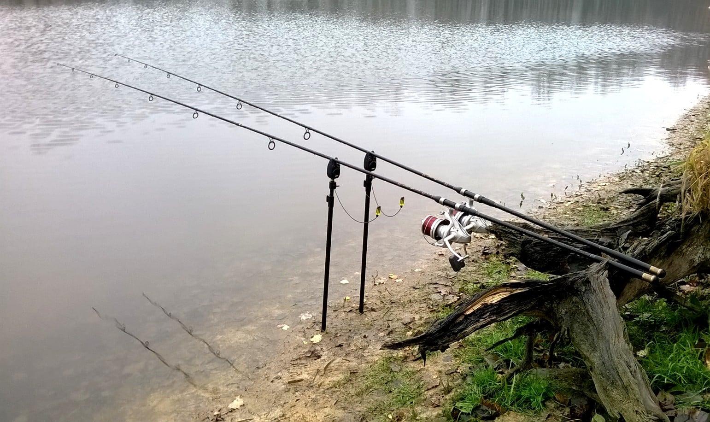 Více jak 35 000 zkontrolovaných rybářů! Kde rybářská stráž na Moravě kontroluje nejčastěji?