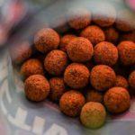 TIPY A TRIKY: Úspěšný lov kaprů na podzim! Jaké boilies používat ve studené vodě?