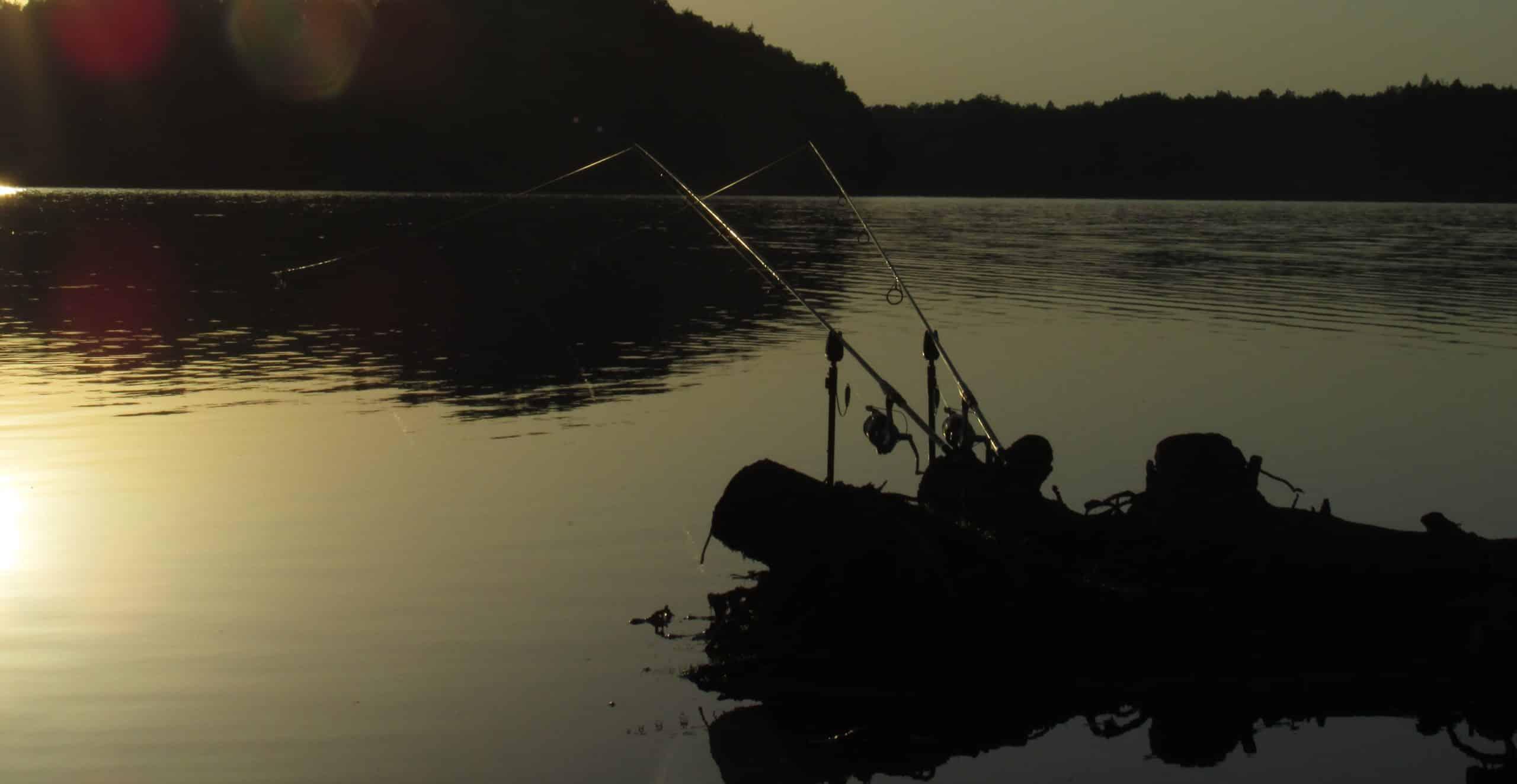 Rybář kritizuje: Více jak 55 miliónů korun! Kde končí peníze za nesplněné brigády rybářů?