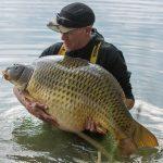 Splňte si sen! Na veletrhu For Fishing se bude soutěžit o rybářskou výpravu do Anglie na jezero NASH