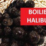 Halibutové krmné boilies za pár korun: Lepší než pelety? Geniální návnada, kterou kapři milují!