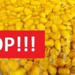 Fermentovaná kukuřice? Známe něco lepšího! Tohle je nejsmradlavější kukuřice na trhu!