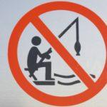 Zákaz rybaření na Labi: Na oblíbeném úseku se nesmí do neděle chytat! Proč?