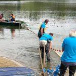 Vědci na populárním rybníce lovili ryby elektřinou! Ulovenou bílou rybu odvezli do ZOO jako krmivo