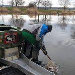 NASAZOVÁNÍ RYB: Do svazových revírů putovaly první ryby letošní sezóny! Kde všude se nasazovalo?