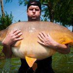 Český rybář ulovil dva gigantické kapry přes 45 kilo váhy ve dvou zemích! VČechách ale sklízí závist