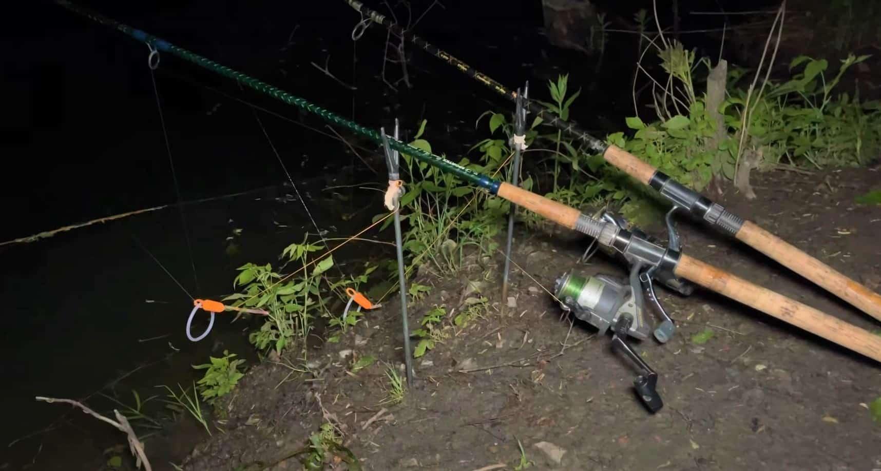 Noční rybaření na žížalu u břehu: Jednoduché chytání, které si okamžitě zamilujete!