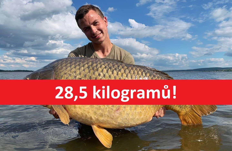 """Gigantický kapr o váze 28,5 kilo ze svazovky! """"Rybu jsem chytil na vlastní boilies,"""" řekl rybář"""