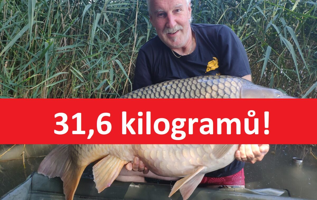 Kapr o váze 31,6 kilo zčeské pískovny! Jde o druhou rybu přes 30 kilo ztéto vody