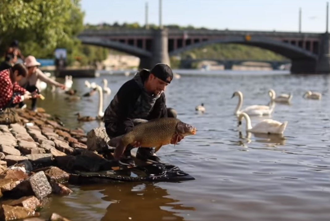 Video: STREET HUNTER – Fishing in Prague (2. část)