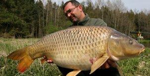 Biologie ryb – Vývoj rybího organismu