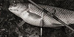 Příběh jednoho dědy, který mě přivedl k rybaření