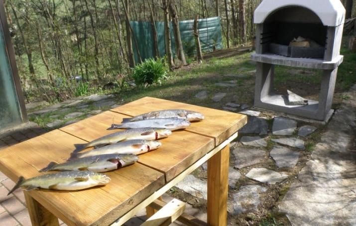 Pronájem chaty u řeky Jihlavy – JM Hrubšice u Ivančic