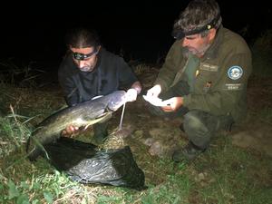 Intenzivní kontroly rybářů na Orlíku pokračují
