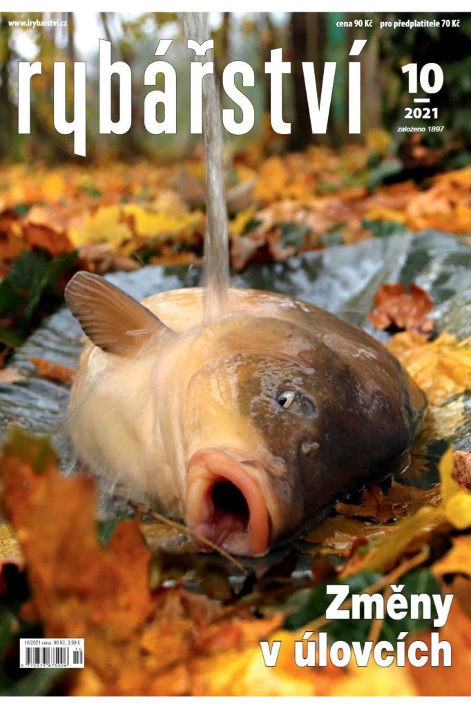 Říjnové Rybářství: Jak se měnily úlovky vposledních 15 letech a jaký je stav na Lipně?
