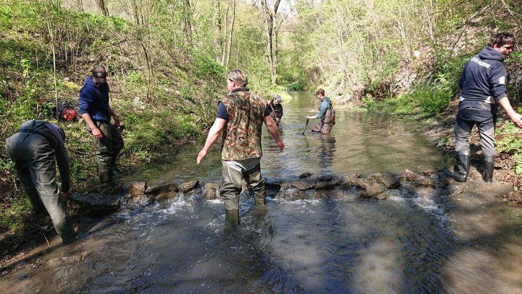 Obnova a úklid Radotínského potoka