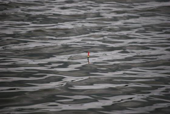 Tip#023: Nastavení hloubky při lovu na plavanou