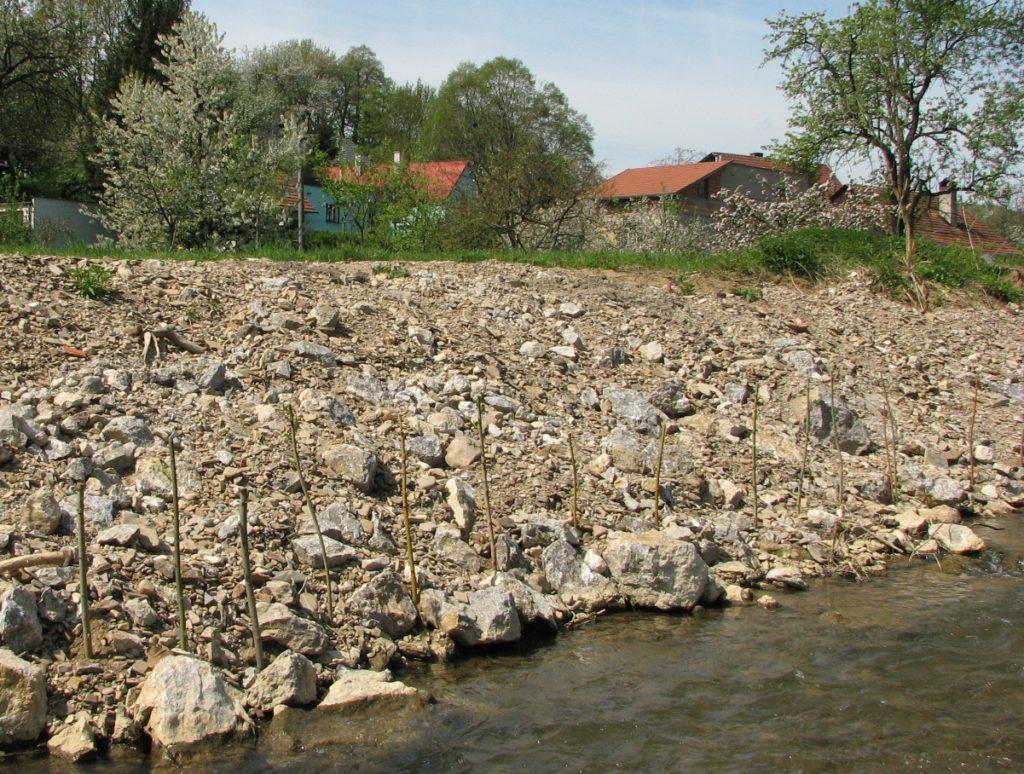 Mrtvé dřevo. Opomíjený materiál při úpravách vodních toků
