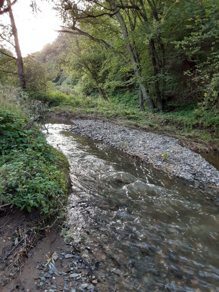 Další katastrofa na Drnovém potoce zažehnána. Vyznamenali se hasiči