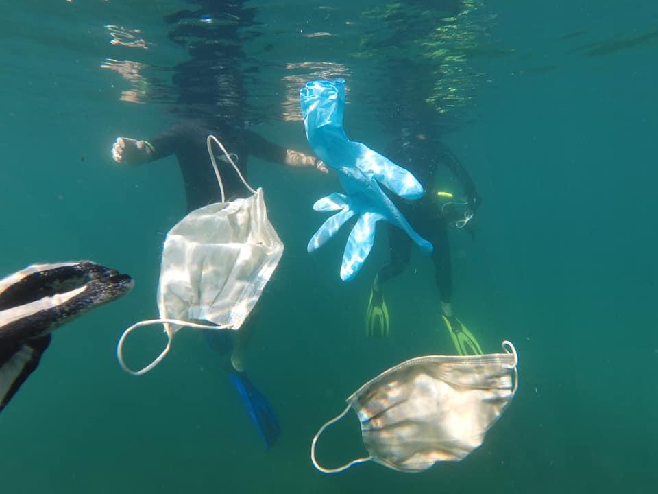 Ve Středozemním moři bude brzy víc roušek než medúz