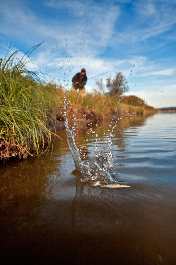 Rybolov v Polsku. Vyrazte na rekordní kapry, candáty a štiky