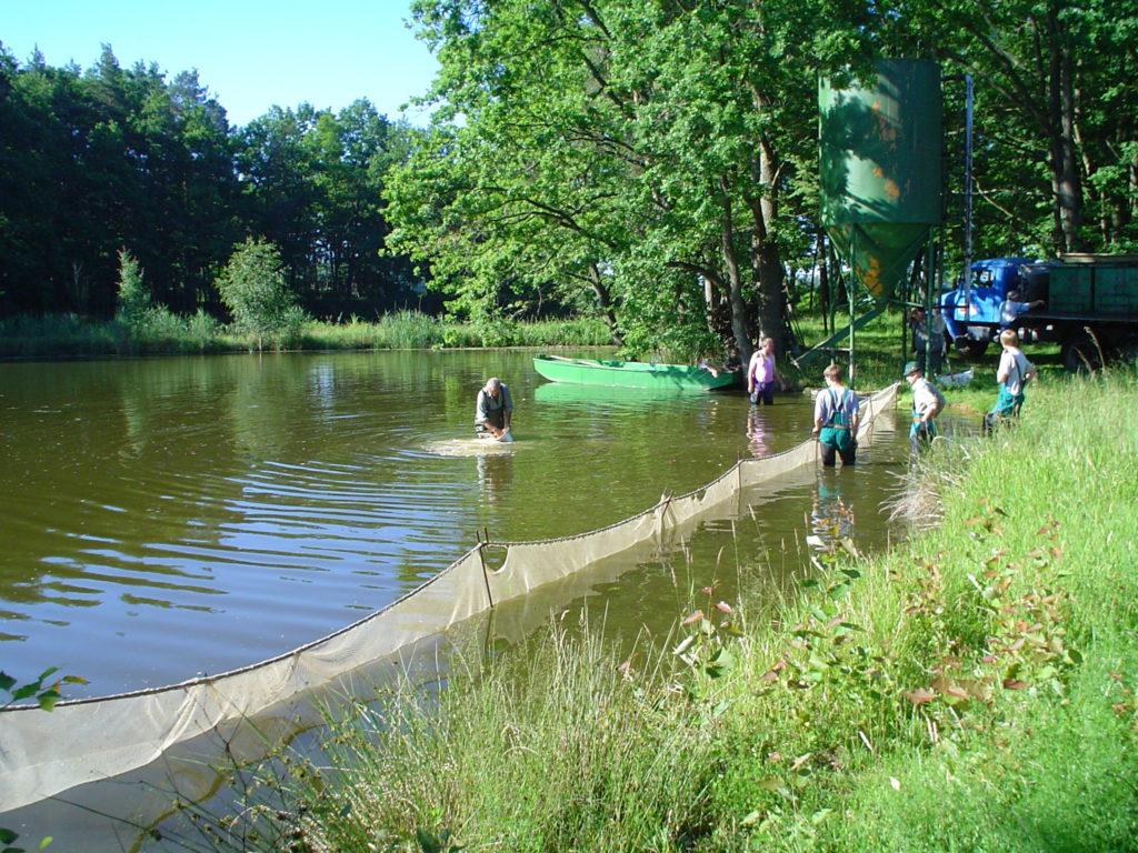 Učíme se v Třeboni: Léto na rybnících
