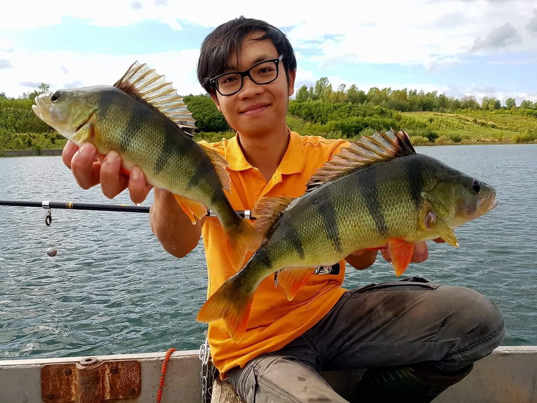 Šonova hodina rybářské vietnamštiny: Cá rô [ka-zo] = Okoun říční. Čím víc pruhů, tím víc adidas
