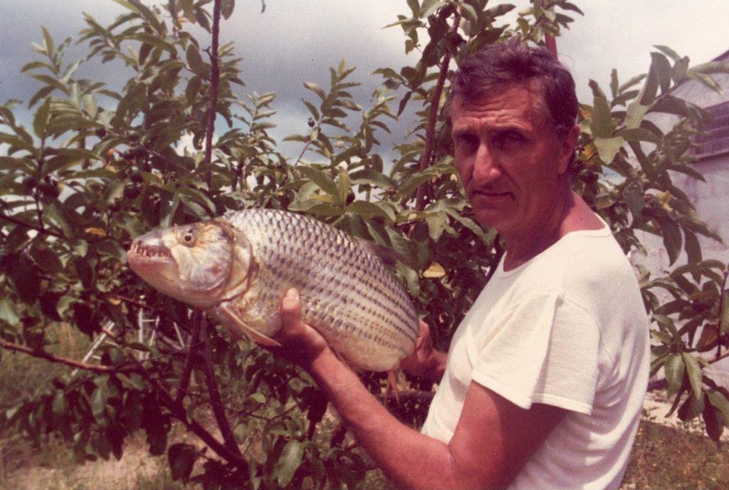 Listopadové Rybářství: vzpomínání na pana Vostradovského, nové plemeno kapra a environmentální DNA