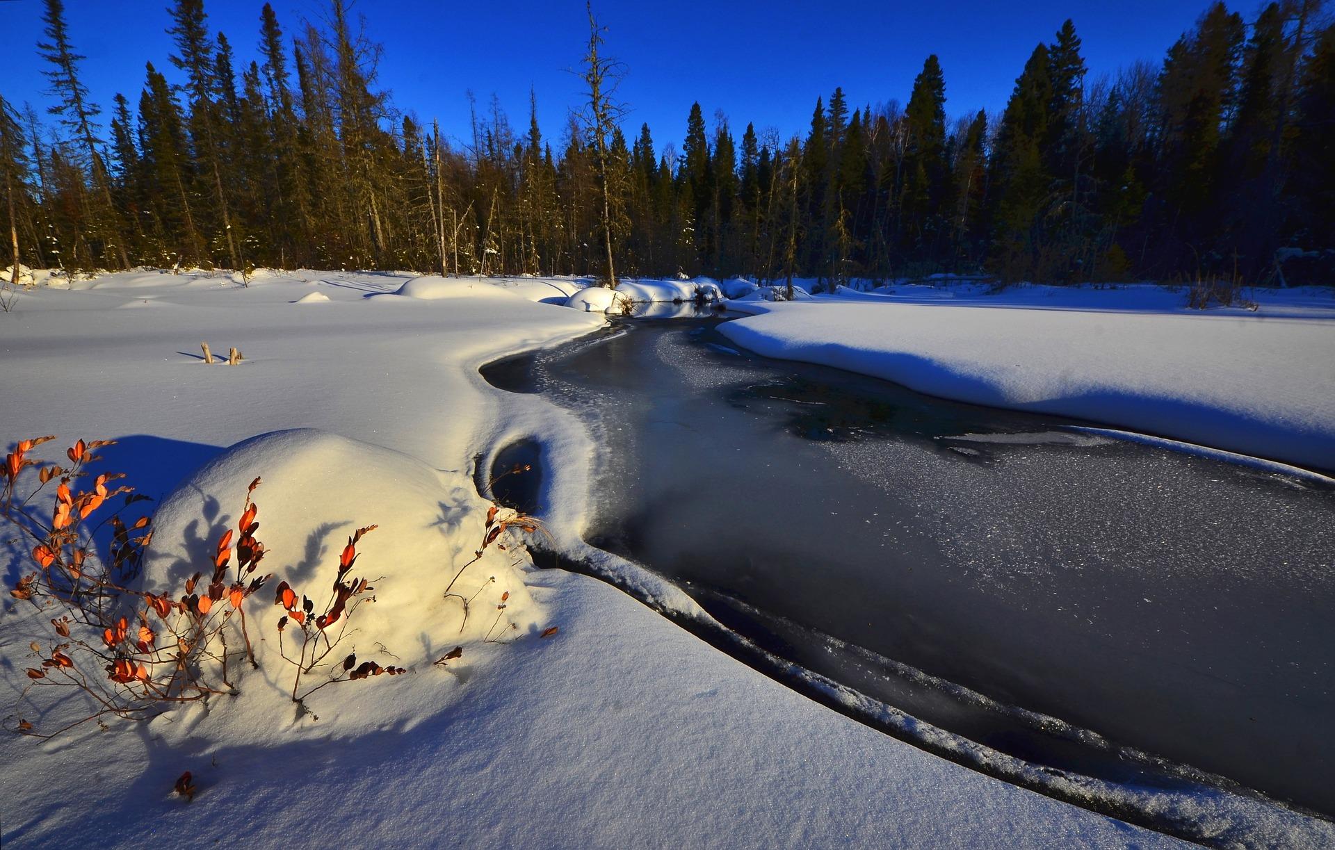 Kde hledat ryby v zimě?