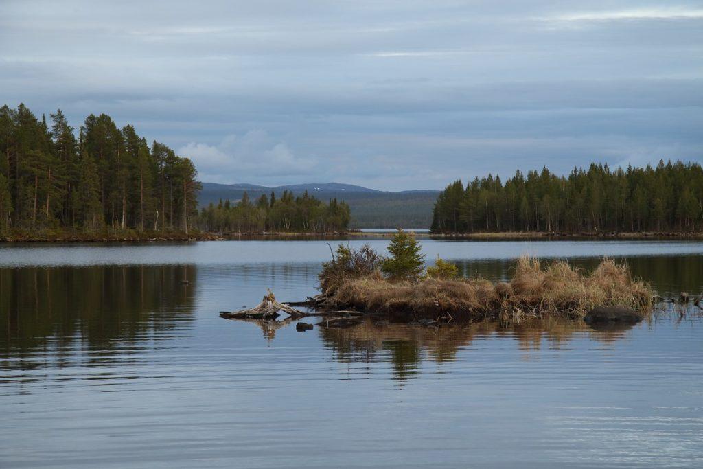 Opatření proti koronaviru: Na co si dát pozor, když chcete jet rybařit do Švédska, Finska nebo Norska?