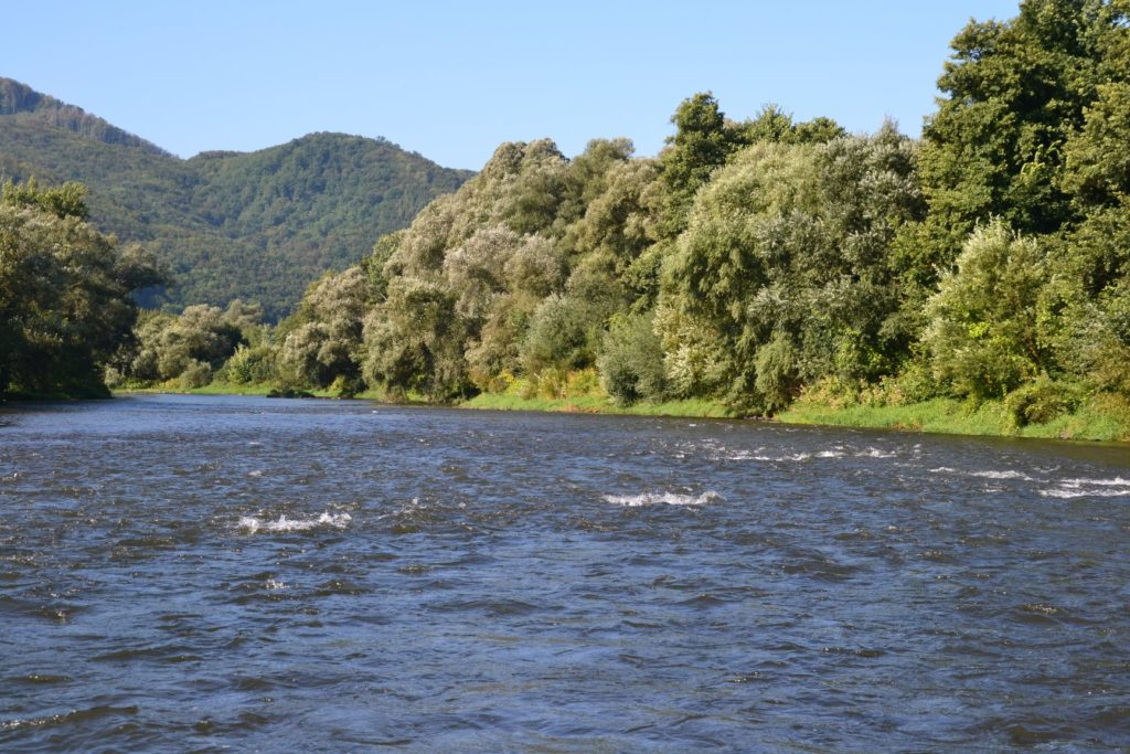 Vraťme život řece Hron! Pojďme ji pomoct společně zarybnit, vyzývají slovenští rybáři