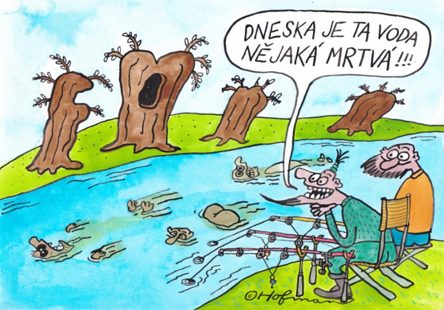 Kladivo českého vikinga: Rybářské vtipy, moudra a hádanky