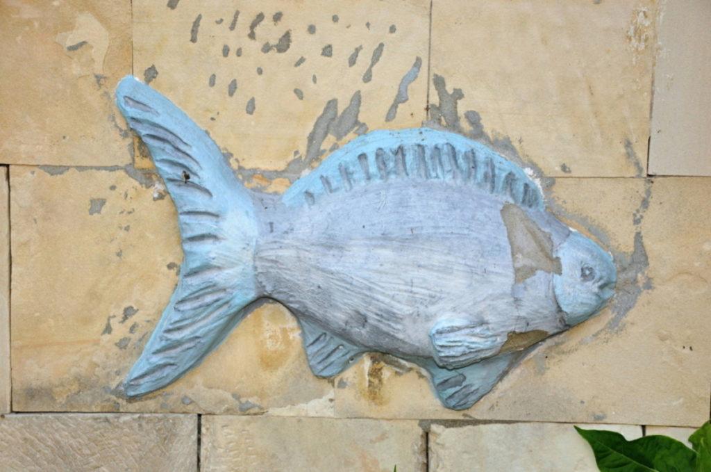 Ryby jako inspirace pro užité umění