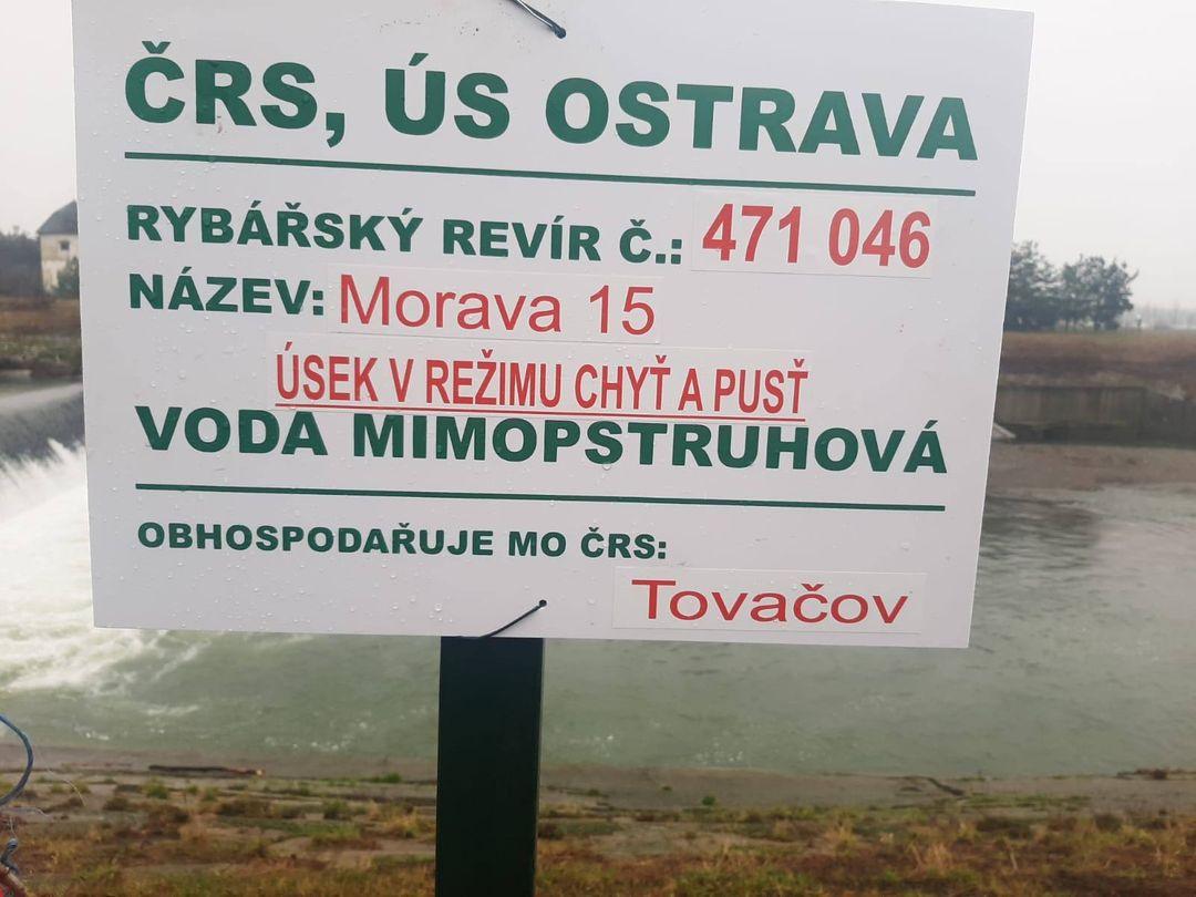 Na řekách Bečva a Morava vznikl úsek s režimem chyť a pusť