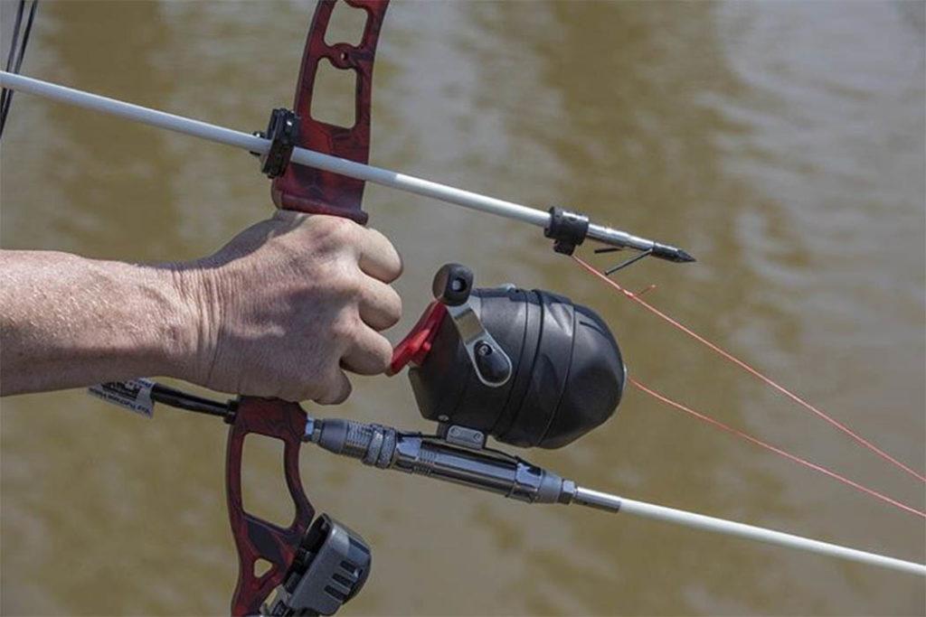 Bowfishing: Týrání ryb, anebo atraktivní způsob rybolovu?