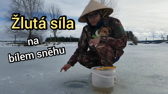 Šonova hodina rybářské vietnamštiny: Da vàng trên tuyết trắng [za-van-čen-tuit-čan] = Žlutá síla na bílém sněhu
