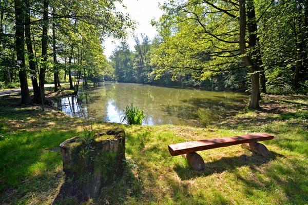 Bohumínský Gliňoč: Když nejde zanesený rybník vybagrovat, pomohou speciální bakterie