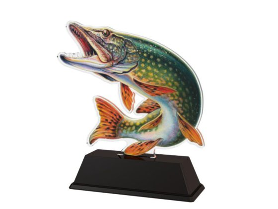 Moderní rybářské ocenění pro každého